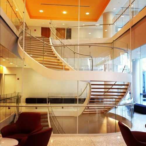 98 best images about NYU My Current Home on Pinterest