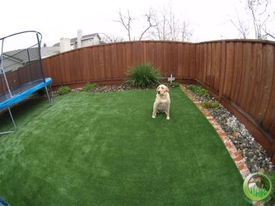 Best 25 Synthetic Lawn Ideas On Pinterest Putting Green