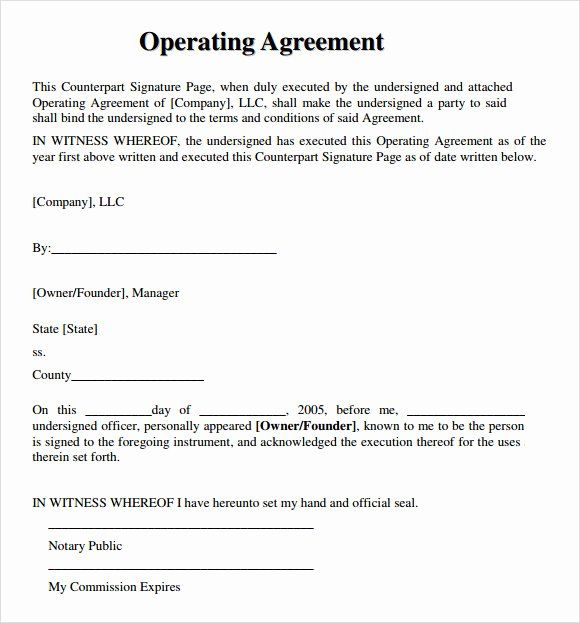 Real Estate Team Agreement Template Beautiful Llc Operating Agreement Free Resume References Agreement Templates
