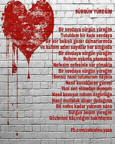 #şiir #sürgün #zekiates