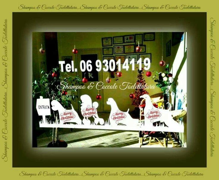 Shampoo & Coccole Toelettatura by Suė Fernandez   +39 0693014119-Roma.