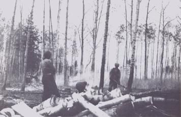 First Wave of Ukrainian Immigration to Canada, 1891-1914. Though this photo was taken in Sifton, MB, it shows the first job of the new immigrant, clearing the land and building a house.
