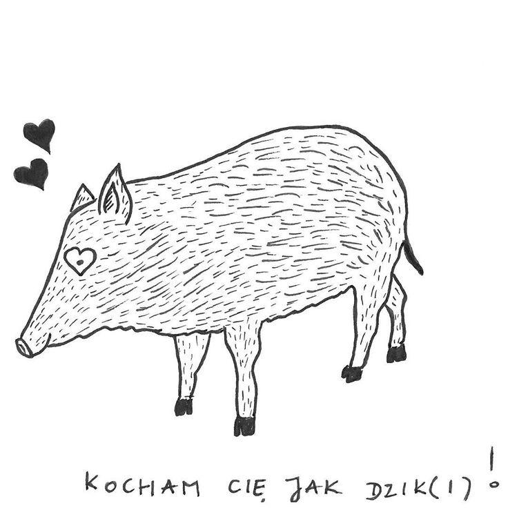 Walentynki za rogiem. Bazgrozeszyt. #illustration #valentines #day #outline #scribbles #doodles #sketch #boar #love #relationship #kartka #bazgroły #dzik #dziki #serca #miłość #art #easy #rysunek #pomysł #hobby #me #zakochany #dzik #instadrawing