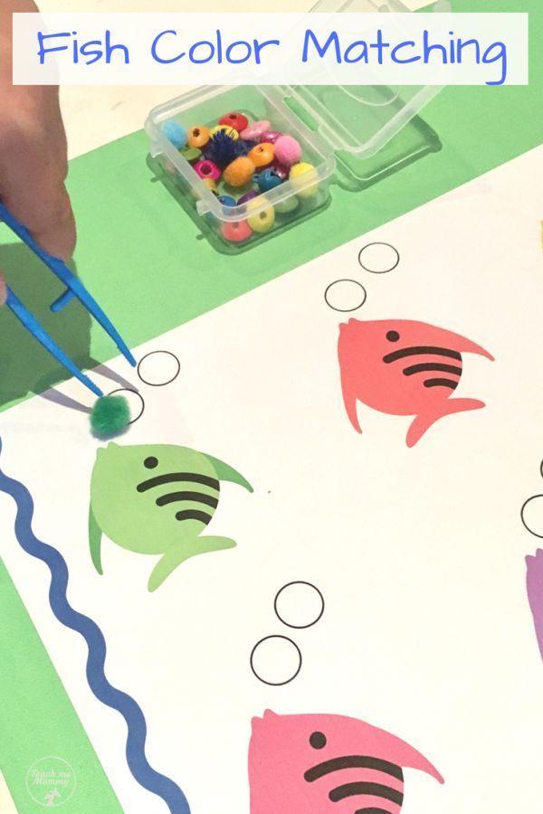 Color Matching Fish Preschool Activities Preschool Fine Motor