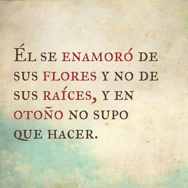 Jaaaay chichí ---> Él se enamoró de sus flores y no de sus raíces, y en otoño no supo que hacer... #Frase #HistoriadelaVidaReal Vía @melvynperez