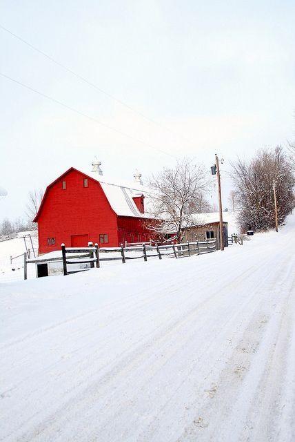 Celeiro vermelho na paisagem branca do inverno.  Fotografia postada por Roxie em Indulgy.