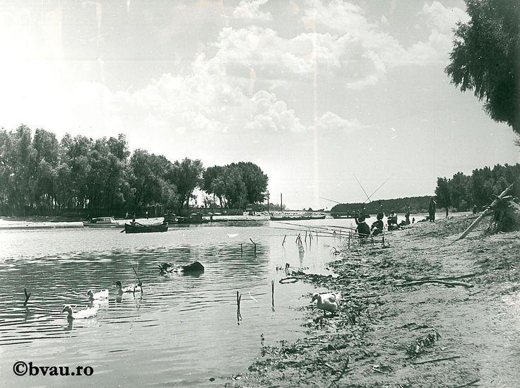 """Vara la Zaclău I / Năstase Marin .- Galaţi, 1971. Imagine din colecțiile Bibliotecii """"V.A. Urechia"""" Galați."""