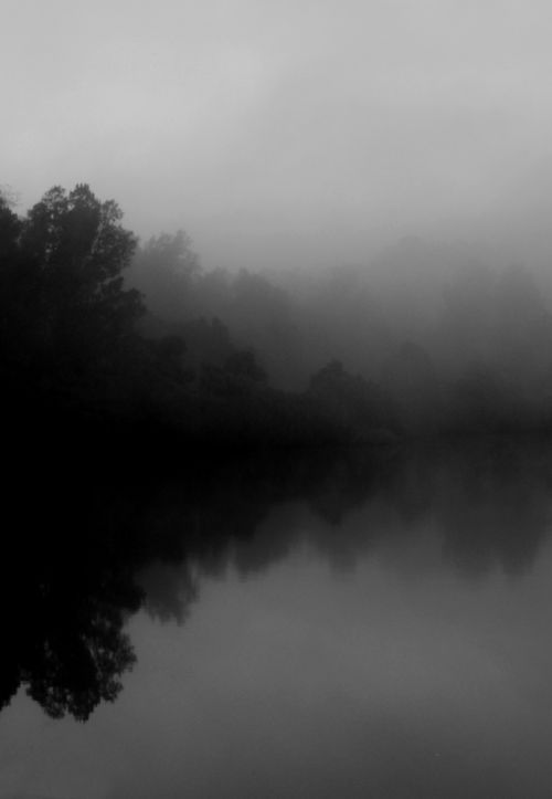 ☾ Midnight Dreams ☽  dreamy & dramatic black and white photography - night mist