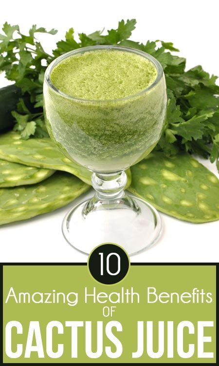 the amazing health benefits of 10 amazing health benefits of cactus juice things to