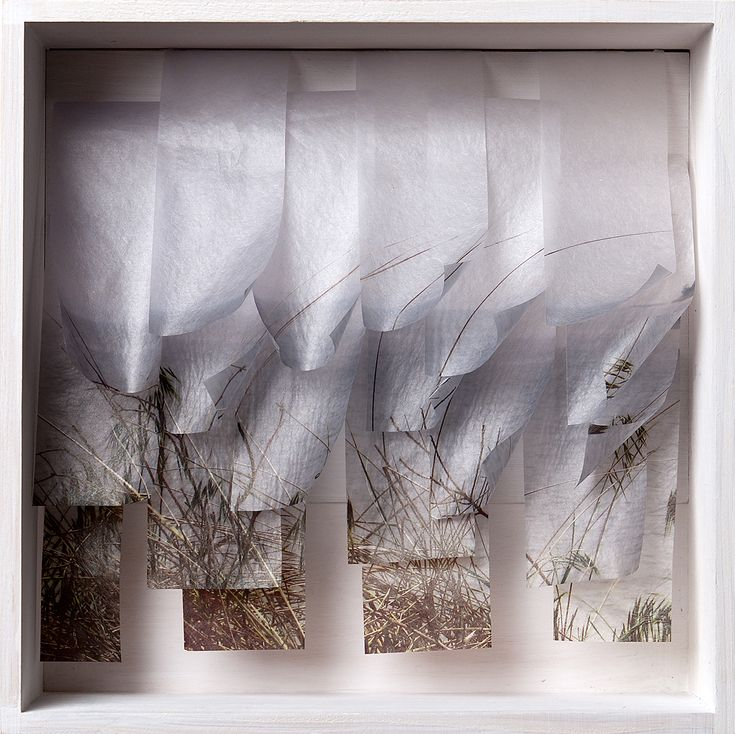 Katherine D. Crone, Blades of Grass, Wood, Usuyou Gampish, nylon monofilament Digitally altered photograph, inkjet printed, bookbinding stitched http://www.katherinedcrone.com/