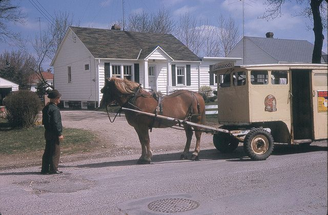 Last Horse Drawn Silverwoods Delivery Wagon Sarnia On