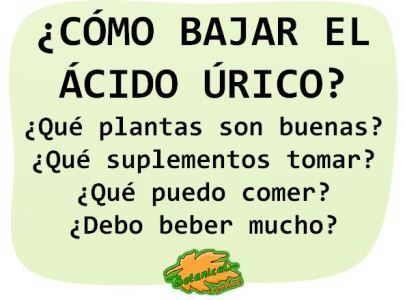 acido urico remedios naturales infusiones plantas como bajar o reducirlo