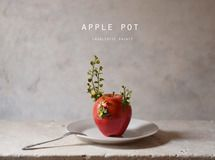 apple pot (realistic paint)アーティフィシャルフラワー