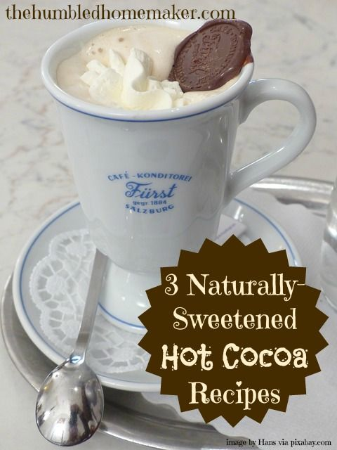 Just what I've been looking for!!! 3 Naturally-Sweetened Hot Cocoa Recipes | thehumbledhomemaker.com