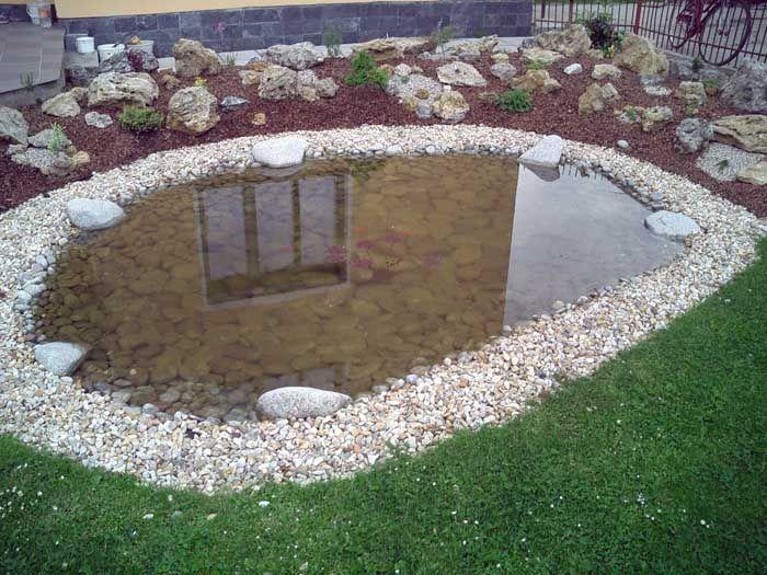 Záhradné jazierka, rastliny, kvety ,porasty do záhradných jazierok