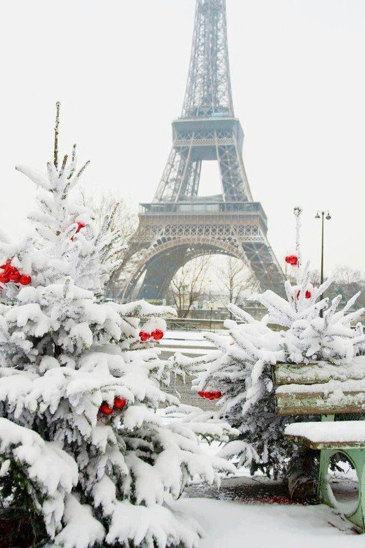 Paris in winter - beautiful