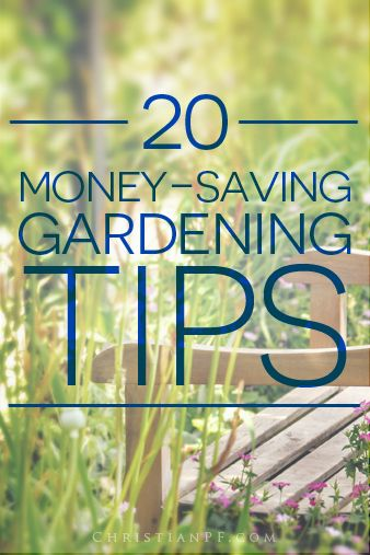 20 #gardening tips from Pinterest for those on a budget... http://christianpf.com/?p=14606