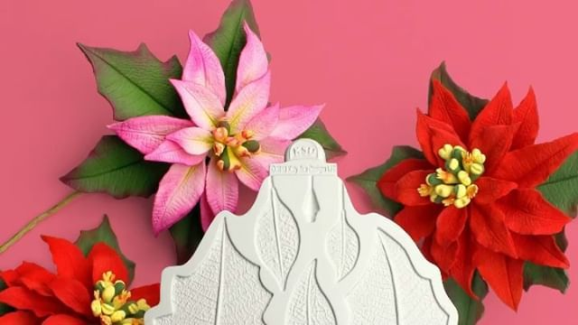 We Are In Love With The New Poinsettia Mould Designed By Chef Nicholas Lodge For The Flower Pro Range It Comes With Mould Design Seasonal Flowers Clay Flowers