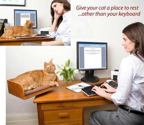 Lâche mon clavier!