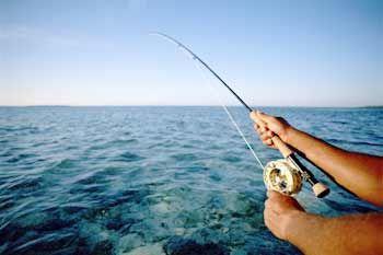 go deep sea fishing.