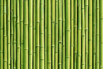 Green Bamboo Sticks Zen Wallpaper For Walls In 2018 Pinterest And Wall