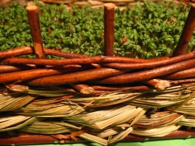 How to Make Willow Baskets