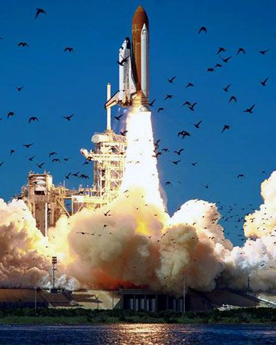 a research on the explosion of the challenger spacecraft The iconic image of space shuttle challenger's smoke plume after its breakup   the challenger disaster has been used as a case study in many discussions of.