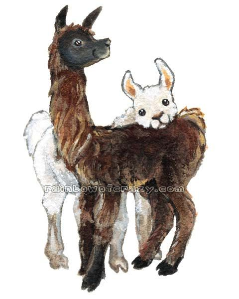 Cute Llama Print Farm Animal Art Llama Pair I by rainbowofcrazy