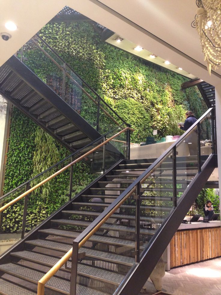 Green wall | Vertical green wall, Garden living, Indoor garden