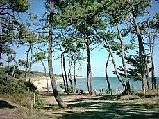 Ravissant studio à louer pour des vacances détente à Jard sur Mer, en Vendée