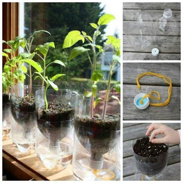 Simple Mini Garten mit Bew sserung