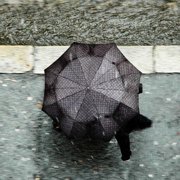 Umbrella From Above   Cerca Con Google