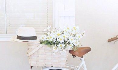 basket, daisies, bike abeachcottage.com