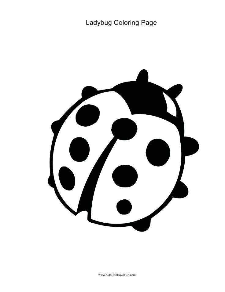 Coloring to print : Animals - Insects - Ladybug number 33546