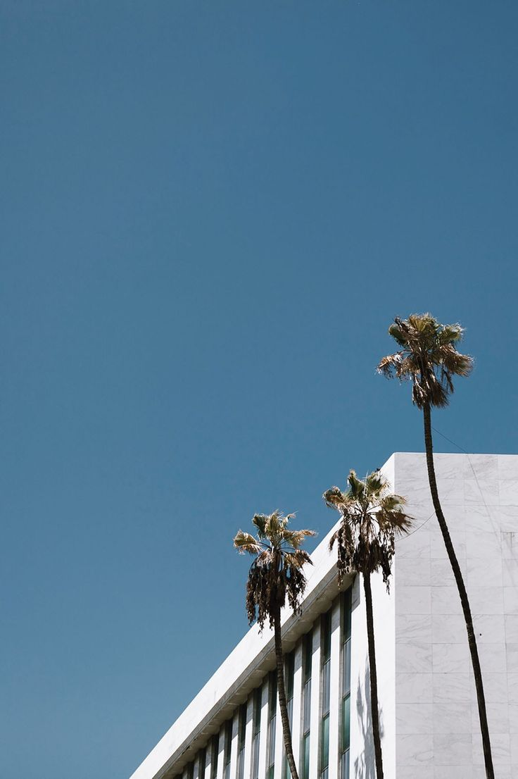 http://roaminglovers.fr/los-angeles/ #roaminglovers #palmtrees #architecture #losangeles #minimal #colorblock #landscape #la #building
