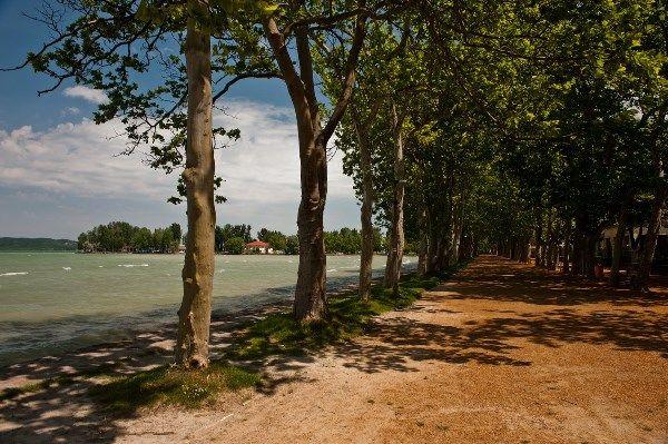 The Kvassay Avenue runs near the lake. At springtime the fresh breese with a truly amazing view transforms a simple walk into a quite relaxing experience! / A Kvassay sétány közvetlenül a Balaton-part mellett halad.