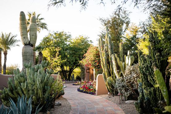 Guide to the Ultimate Long Weekend in Phoenix - WSJ.com