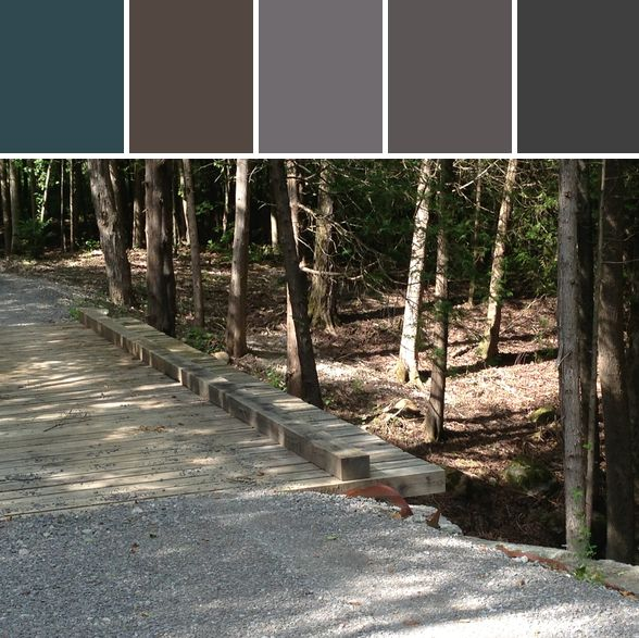 Forest Retreat Designed By Colleen M Cole via Stylyze #colourpalettesilove