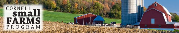 Cornell Small Farms Program   Serving small farmers in NY and the Northeast