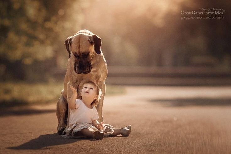 Little Kids & their Big Dogs