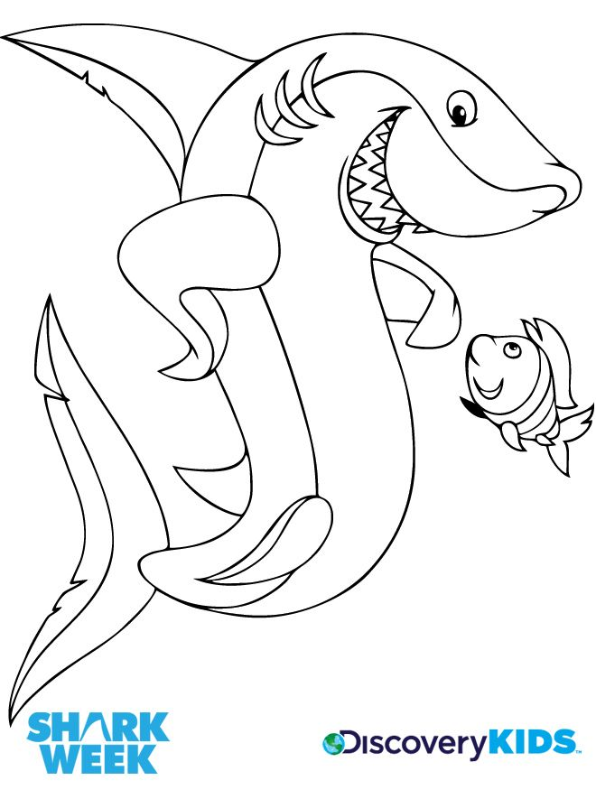 Discovery Kids :: Activities - Shark & Friend Coloring Page