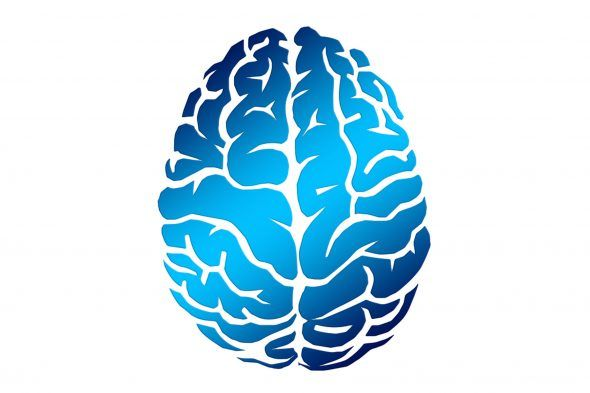 """نوروسافاری   همه ما گاهی اوقات چنین سوالات را از خود پرسیده ایم که """"کلیدم را کجا جا گذاشته ام؟""""، """"اسمش چه بود؟""""، """"ماشین را کجا پارک کرده ام؟""""  به میزانی که فرد مسن تر می شود حافظه اش ضعیف تر می شود، بنابراین پیدا کردن راهی برای تقویت حافظه با در نظر گرفتن این نکته که طول"""