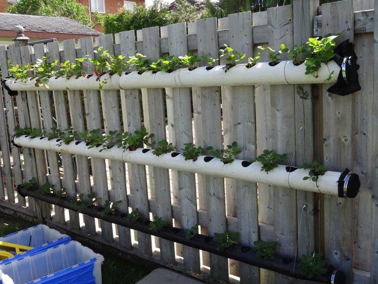 les 76 meilleures images du tableau jardins sur pinterest jardinage potager et jardins ext rieurs. Black Bedroom Furniture Sets. Home Design Ideas
