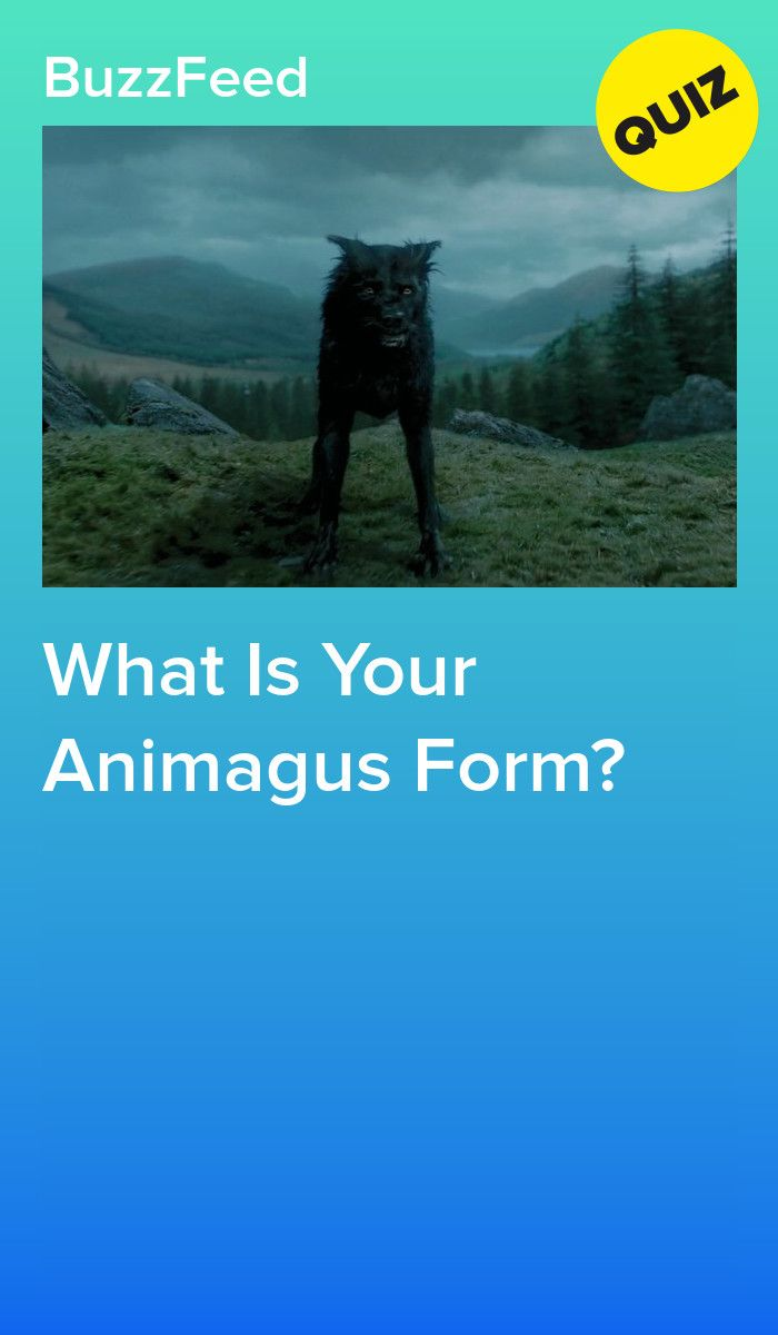 What Is Your Animagus Form Harry Potter Quiz Harry Potter Buzzfeed Harry Potter Life Quiz
