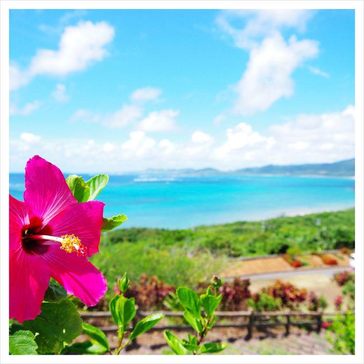 沖縄が大好きです