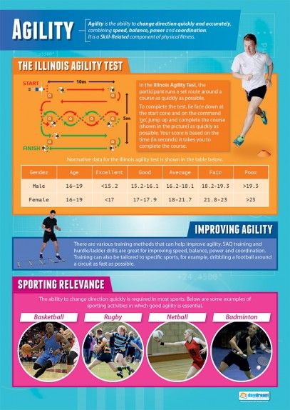 Agility Poster