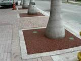 City of Miami Tree Pit