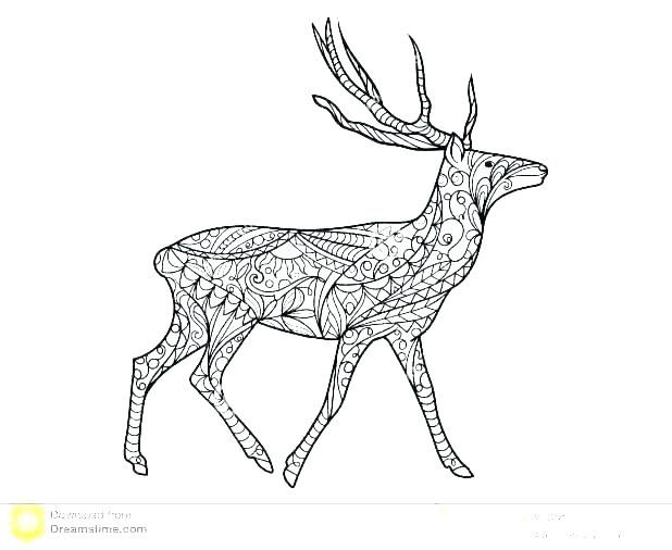 Deer Coloring Page With Images Deer Coloring Pages Animal