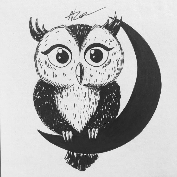 Day 6 owl #inktober #ink #art #owl #harrypotter #moon #graphic #design #sketch #sketchbook #draw #doodle #illustration #artwork #nza #nzart #2016  #инктобер #арт #сова #гаррипоттер #графика #дизайн #скетч #скетчбук #рисунок #иллюстрация #тушь #артработа #nick_arty