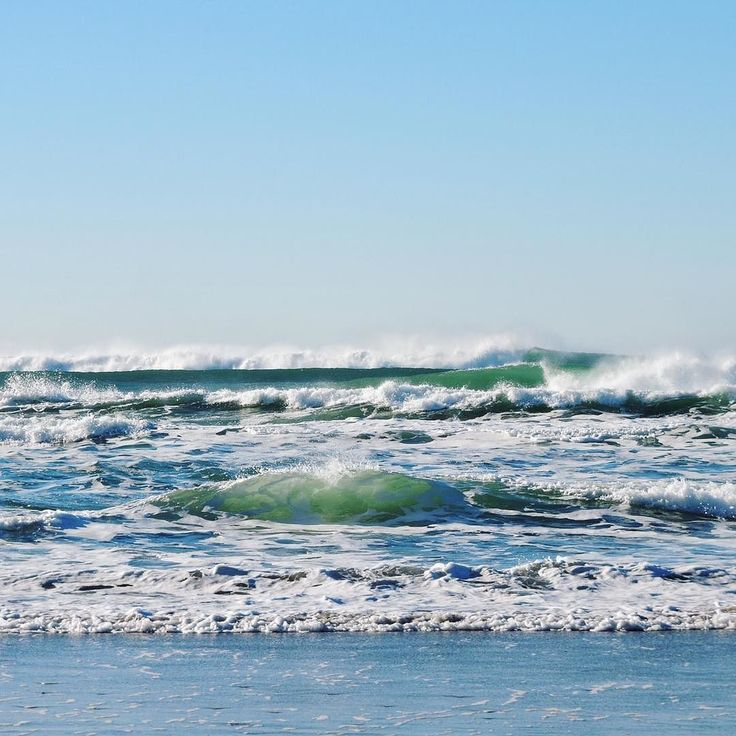 Save the waves by shopping CLN WAV apparel     #surfapparel #fllove #roamflorida #floridalife #floridalocal #floridacompany #floridaliving #surfergirl #surfing #surfer #skimboarding #zapskimboard #zapskimboards #shellycove #ivoryella #sandcloud #sandcloud #savethefishies #saveearth #savewater #savethewaves #minneapolismn #fortmyersfl #shoplocal #shoplinkinbio #shortsleevetees #clothingcompany